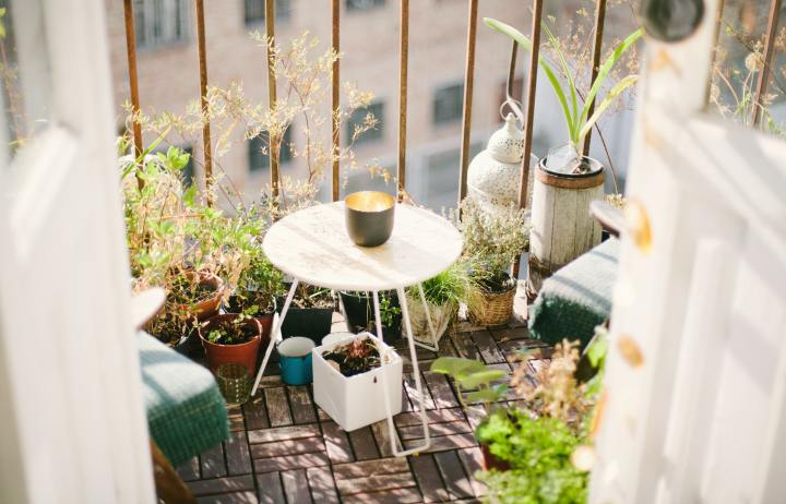 How to start a Container Garden –properly!