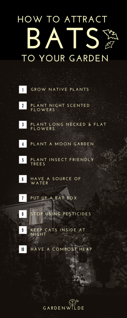 Pinterest pin graphic stating 10 ways to attract bats to your garden