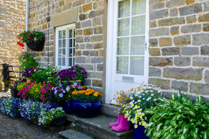 10 Ways to Plant Your Containers with Repurposing in Mind